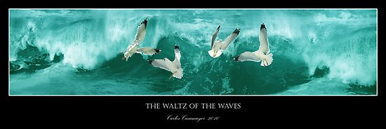 The Waltz Of The Waves by Carlos Casamayor