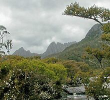Cradle Mountain from lake Lilla, Tasmania, Australia. by kaysharp