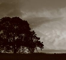 Mammatus Clouds by Jane Burridge