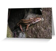 Yorkshire Lizzard Greeting Card