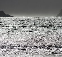 Black Sea by Walter Quirtmair