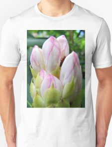 Hideaway Unisex T-Shirt