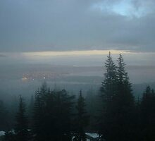 View from Grouse Mountain, Vancouver by Liz Wolfe