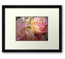 The Rose And The Hydrangea Framed Print