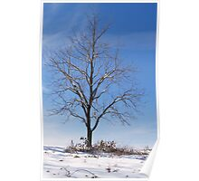 NAKED IN WINTER Poster