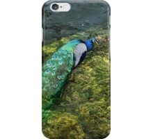 Waterfowl? iPhone Case/Skin