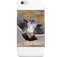 Blue Jay Lands iPhone Case/Skin