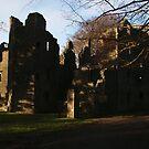 Mallow Castle by Jason Kiely