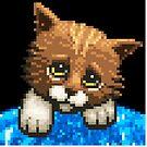 AQUA KITTY - Sad Cat by Tikipod