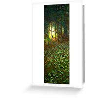 White Bear Forest Nature Trail Greeting Card