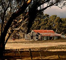 Old Shedding Lexton Victoria by Joe Mortelliti