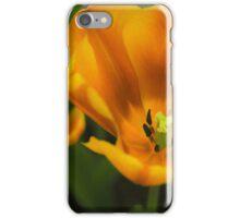 Golden summer floral iPhone Case/Skin