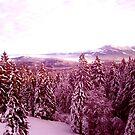 Swiss Delight by LeedenMoon