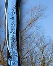 Icicle, Macro To Infinity by Gene Walls