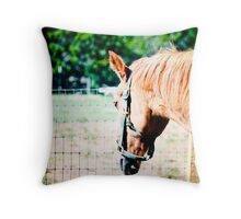 Hey Horsey -- A Shy One Throw Pillow