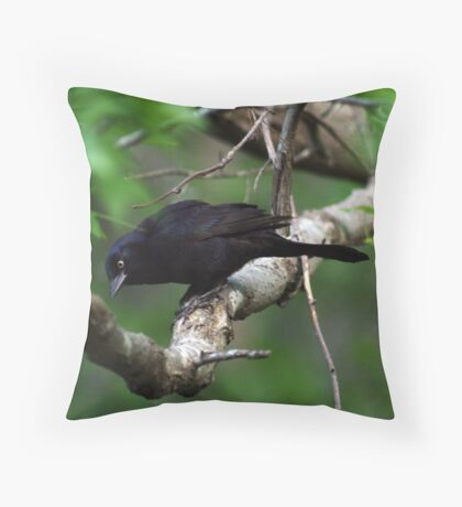 What's on the menu today? Throw Pillow