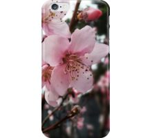 Spring! iPhone Case/Skin