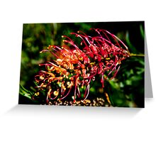 Natural Brush Greeting Card