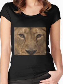 Asiatic Lioness Women's Fitted Scoop T-Shirt