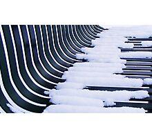 Snowy Bench, Denver's City Park Photographic Print