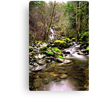 Running Water Canvas Print