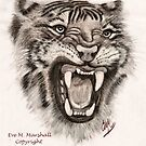 Tiger Face by emarshall