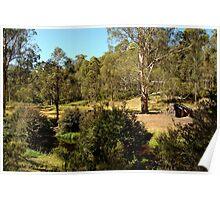 Bindaree Hut,Victorian High Country Poster