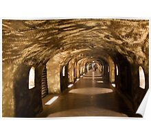 Wine Cave Poster