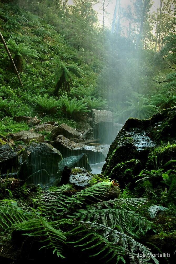 Binderee Falls Victorian High Country by Joe Mortelliti