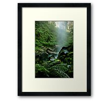 Binderee Falls Victorian High Country Framed Print