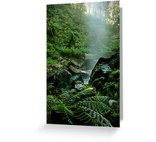 Binderee Falls Victorian High Country Greeting Card
