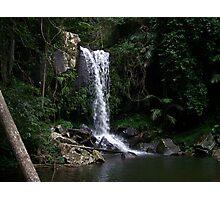 Curtis Falls - Mount Tambourine Photographic Print