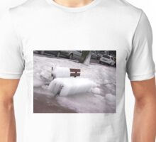 Frozen Bench  Unisex T-Shirt