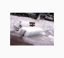 Frozen Bench  Unisex T-Shirt