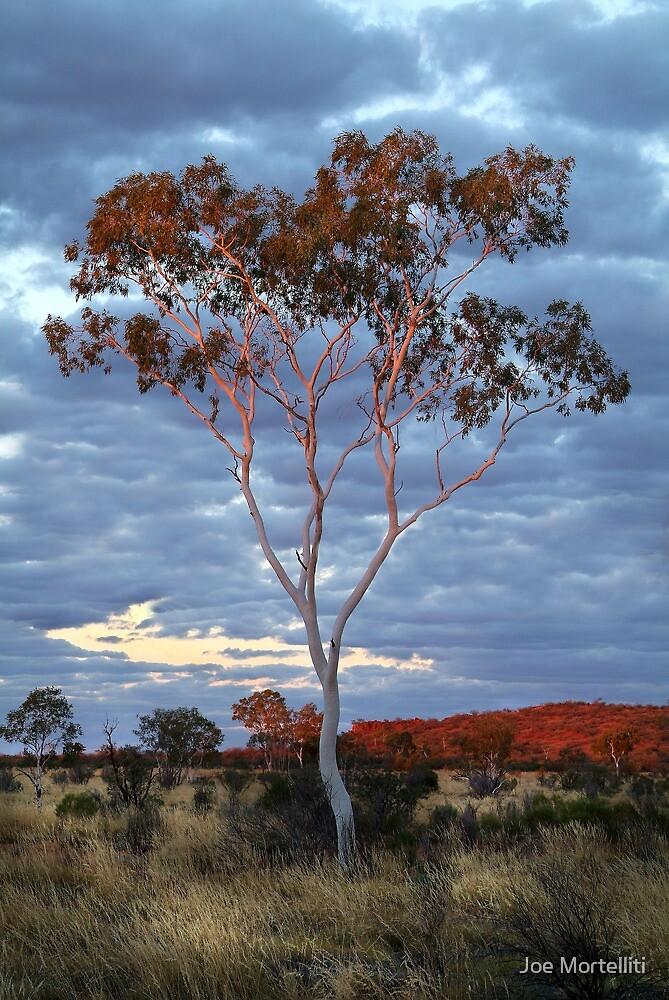 Sunset Batton Hill,North Simpson Desert by Joe Mortelliti