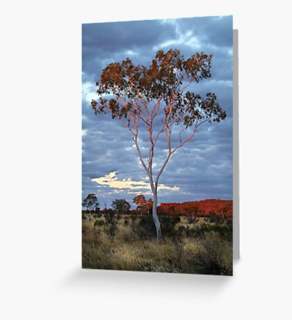 Sunset Batton Hill,North Simpson Desert Greeting Card
