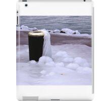 Frozen Bin  iPad Case/Skin