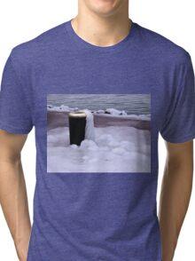Frozen Bin  Tri-blend T-Shirt