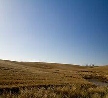 Fields of Timaru by stupie