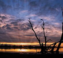 Morning over Lake Bonney  by Bill Atherton
