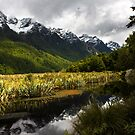 Mirror Lakes, Fiordland by Luke and Katie Thurlby