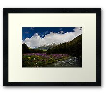 Lupin Valley Framed Print
