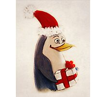 Xmas penguin Photographic Print