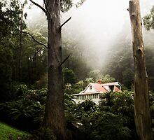 hills fantasy by wellman