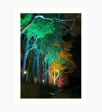Kings Park Lights Art Print