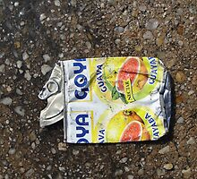 Can On Street by porksofpig