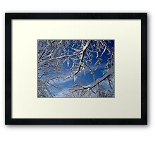 Inside Looking Out   ^ Framed Print