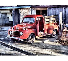 Confined to the Barn Yard Photographic Print