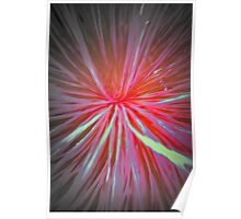 Inside Out - Abstract Poster