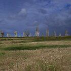 callanish,isle of lewis by james  lovatt